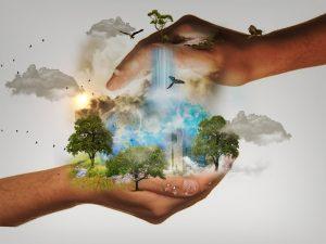 nature conservation, responsibility, world